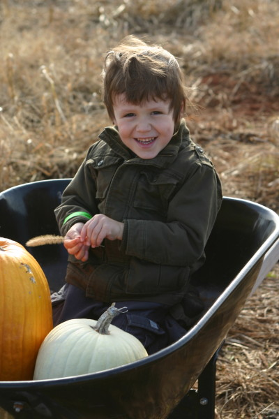 Local Organic Pumpkin Patch Pick-Your-Own