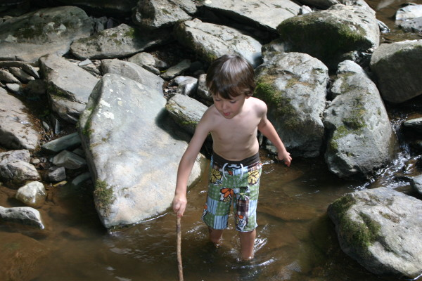 Playing outdoors in nature kids children earth green