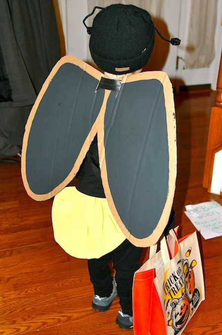DIY Homemade Firefly Lightning Bug Costume for Halloween - back view