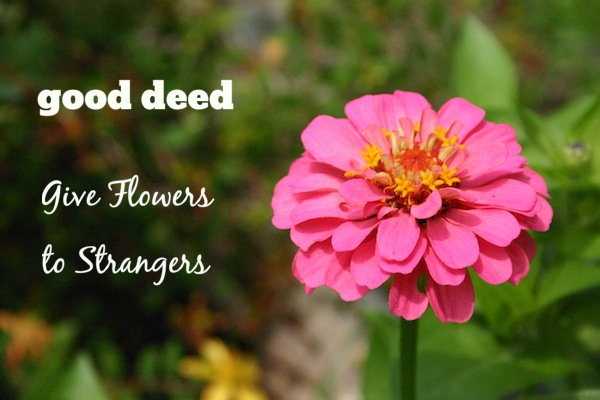 Good Deed - Give Flowers to Strangers