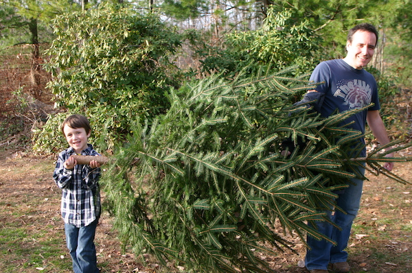 Recyle your Christmas tree and buy from a local farm